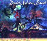 David Nelson Band - Visions under the Moon