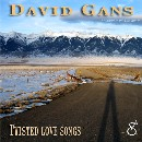 David Gans - Twisted Love Songs