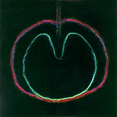 XTC - Wasp Star: Apple Venus Volume 2