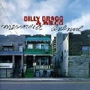 Wilco & Billy Bragg - Mermaid Avenue, Volume 1